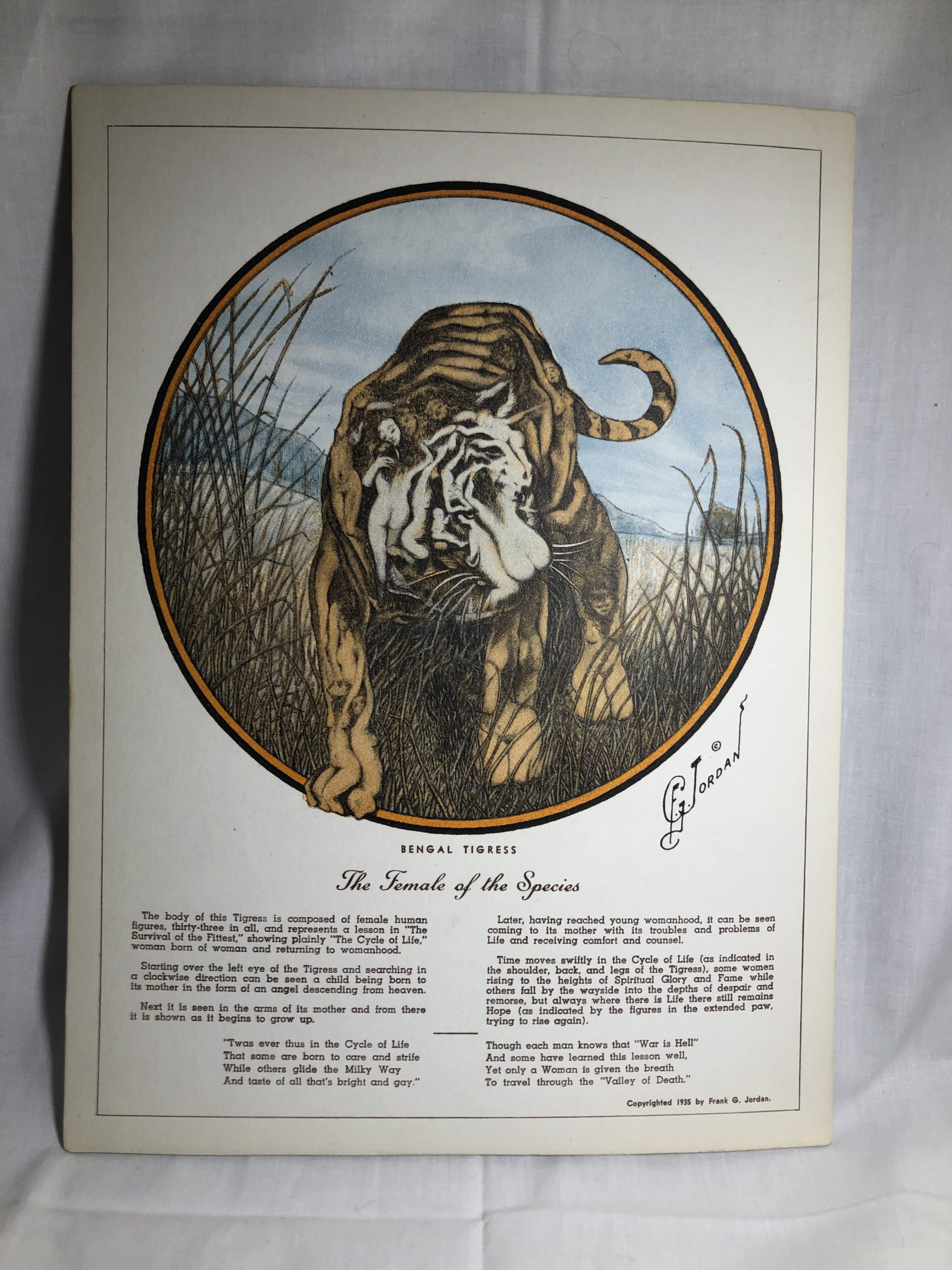 F.G. Jordan Print: Bengal Tigress, The Female of the Species (Women hidden within tiger)